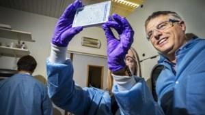 Nu Johnson & Johnson tegenslag kent: hoe zit het met ons Belgisch vaccin?