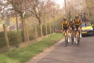 Wuustwezelnaar moet Wout Van Aert aan winst helpen in de Ronde