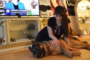 Albanese zangeres voert vanuit Pulderbos mee protest aan tegen hondenvangers in Tirana