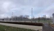 De aprilse grillen doen hun best: Vlaanderen krijgt sneeuw op z'n dak