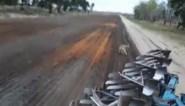 Opvallende beelden vanop militair domein: jonge wolf volgt tractor