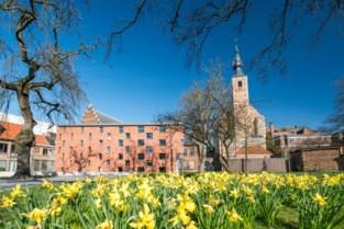 Mechelen roept inwoners op om grootste bloemenweide van Benelux te maken