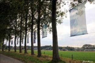 'Kunstexpo Achter Glas' is kandidaat cultuurlaureaat uit eigen huis