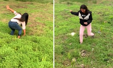 """TikTok in de ban van meisjes die rondrennen op 'zwevend gras': """"Net als lopen in een droom"""""""