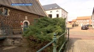 Watermolen in Testelt wordt opnieuw hersteld nadat eigenaar het eerst zelf probeerde zonder toelating