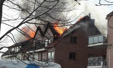 Kwaad opzet uitgesloten bij grote brand in Opwijk, gemeente richt steunfonds op voor slachtoffers