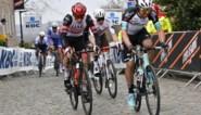 """Michael Matthews wil eindelijk hoofdprijs in Brabantse Pijl: """"Opeenvolging van klimmetjes ligt me"""""""