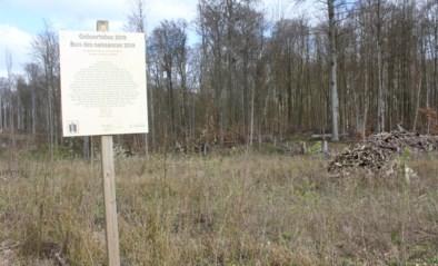 Natuur en Bos plant door corona geboortebos in Zoniënwoud zelf aan