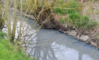 """Onderzoek naar milieuvervuiling in waterloop naar IJzer: """"Kwaad is geschied"""""""