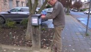 """Reclame verjaagt broedend koolmeesje uit brievenbus: """"Als het elke dag een folder op zijn kop krijgt, geeft hij het op"""""""