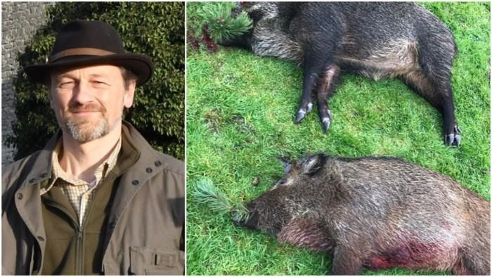 """Eerste everzwijnen na maandenlange loerjacht eindelijk geschoten: """"Tijd om wat slaap in te halen"""""""