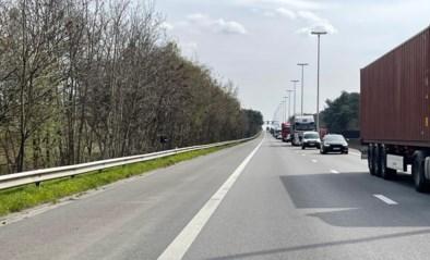 Opnieuw dodelijk ongeval op E313 in Geel: snelweg versperd richting Antwerpen