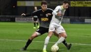 Mandel United naar 1A? Grote naam als trainer, mosselsoupers blijven: het verhaal van de zoveelste buitenlandse eigenaar in West-Vlaanderen