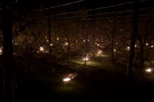 Vuurpotten en windmolens: fruittelers grijpen naar noodoplossingen voor nachtvorst