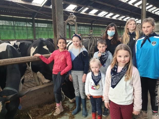 """Kinderen even baas op boerderij: """"We hebben spek met eieren gebakken én koeien geknuffeld"""""""