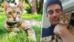 Baasje gaf drieduizend euro voor vermiste kat Cleo, maar verhaal kent geen goed einde