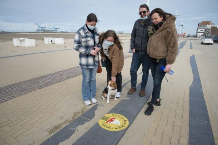 Filmlocaties 'Beau Séjour' herken je voortaan aan grote stickers