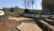 Zelf pruimen, kiwi's en vijgen plukken midden in Gent: nieuwe moestuin in aanbouw aan de Offerlaan