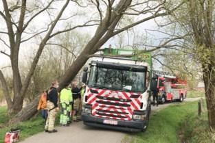 Ophaalwagen rijdt zich vast in Mechelbroekstraat