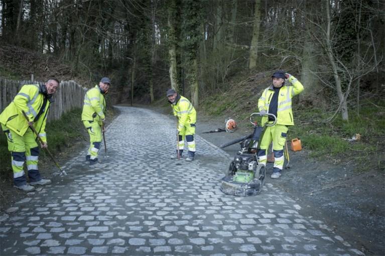 PRAKTISCHE GIDS. Alles wat u moet weten over Brabantse Pijl 2021