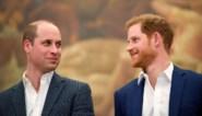 Harry en William zijn het dan toch over iets eens: het standbeeld van Diana