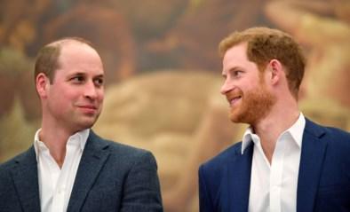 Harry en William zullen elkaar pas voor de eerste keer zien op de begrafenis van prins Philip en Kate moet bemiddelen