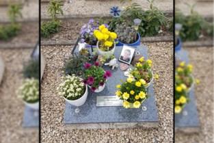 """Bloemen verdwijnen op kerkhof: """"Dit doet verschrikkelijk pijn. Wie doet nu zoiets?"""""""