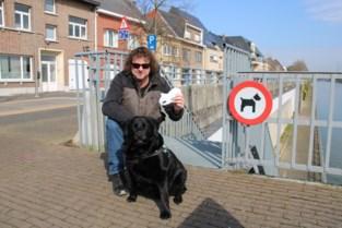 """Hier zijn honden niet meer welkom, komiek Wim Dufraing roept op tot ludieke foto's: """"Ik ga wel wandelen met je alpaca"""""""
