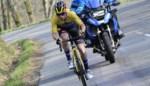 ONZE STERREN. Wie doet Roglic wat in 55ste Amstel Gold Race?