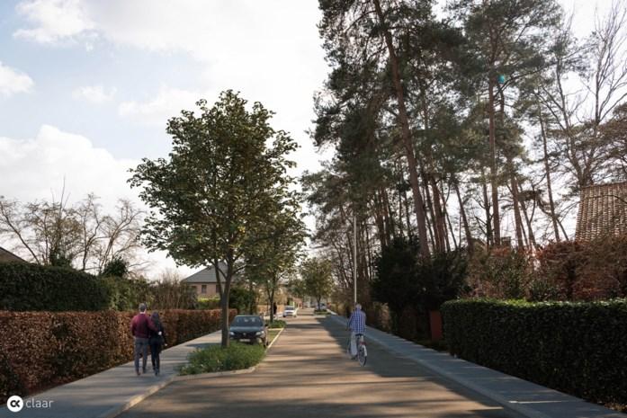 Voetpaden en rijweg Huttelaan worden vernieuwd
