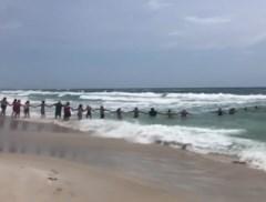 Strandgangers vormen menselijke ketting om 8 jarig meisje van verdrinking te redden