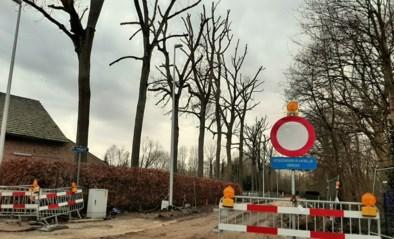Rioleringswerken in Veulen eind volgende maand afgerond