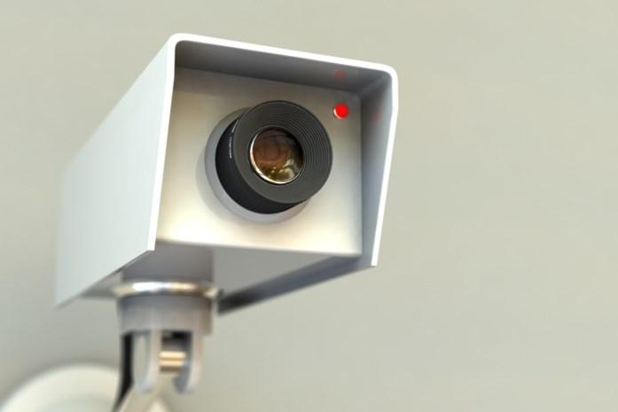 Zonhovens drugskoppel heeft zelfs bewakingscamera's in de kruipkelder