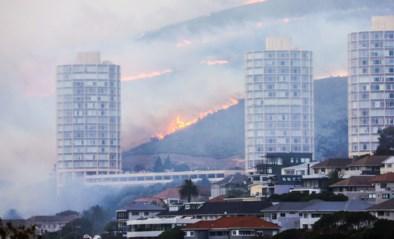 """Vlamingen in Zuid-Afrika over brand op Tafelberg: """"Bloedheet en veel wind"""""""