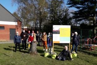 Beeldje 'omarming' siert nieuwe Troostplek in Sint-Job