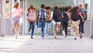 """Waarom experts tevergeefs pleiten voor een kortere zomervakantie: """"Dat kan enkel met herorganisatie van heel het schooljaar"""""""
