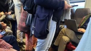 "Reizigers kritisch over bomvolle ochtendtrein Hasselt-Brussel: ""Onverantwoord"""