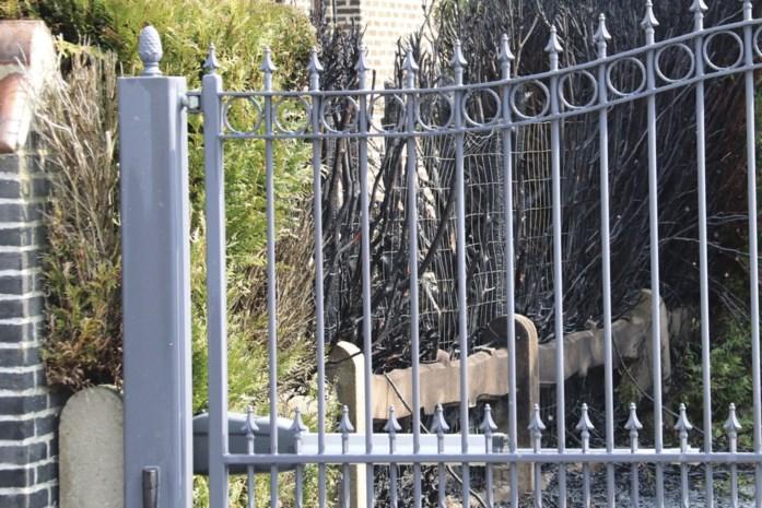 Buren voorkomen erger als sparrenhaag vuur vat