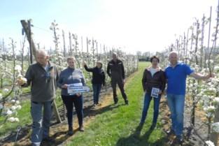 Fruittelers stellen boomgaarden open voor publiek