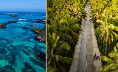 Wegdromen toegestaan: de top tien ecotoeristische bestemmingen ter wereld