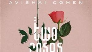 RECENSIE. 'Two roses' van Avishai Cohen:Jazz en klassiek smelten samen ***