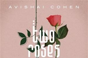 RECENSIE. 'Two roses' van Avishai Cohen: Jazz en klassiek smelten samen ***