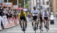Voorbeschouwing Luik-Bastenaken-Luik 2021: Kruipt Alaphilippe uit zijn schulp of walst Roglic over alles en iedereen?
