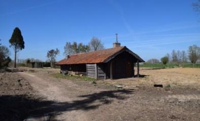 Lopen kan opnieuw in het Vondelhof, domein tegen oktober helemaal vernieuwd