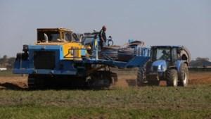 Primeur in Kinrooi: gezuiverd rioolwater als bron van water voor landbouw