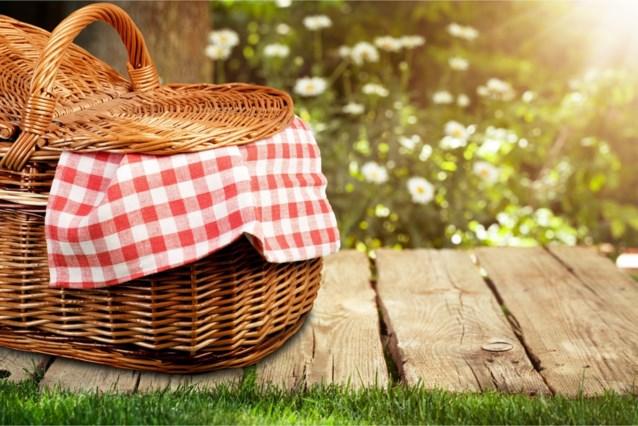 Met deze tips van Sofie Dumont picknick je zonder zorgen