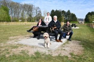 Viervoeters kunnen dollen op nieuwe hondenweide
