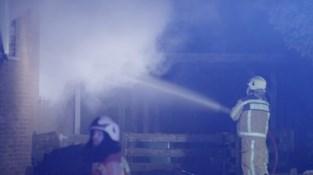Bewoner en hond kunnen ontsnappen uit brandende woning in Diepenbeek