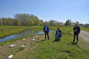 """Drie gemeenten promoten samen wachtbekken Heistergem: """"Een van de mooiste natuurgebieden van de streek"""""""