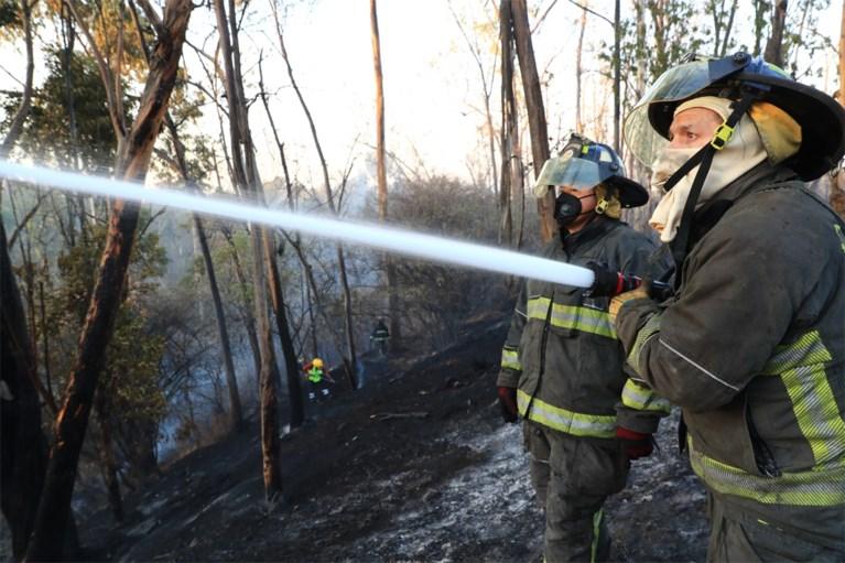 Bosbranden en droogte in Mexico